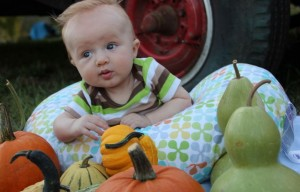 Carter Pumpkin Patch