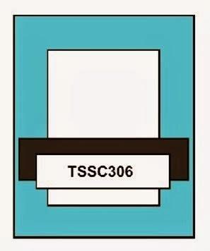 TSSC306