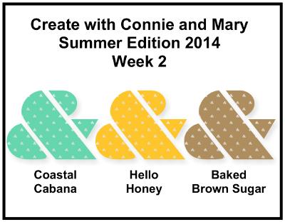 CCMC-SUM Week 2