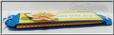 SUOC123 Sweet Treat inside