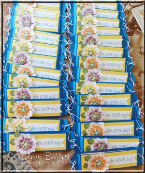 SUOC123 Sweet Treat lineup
