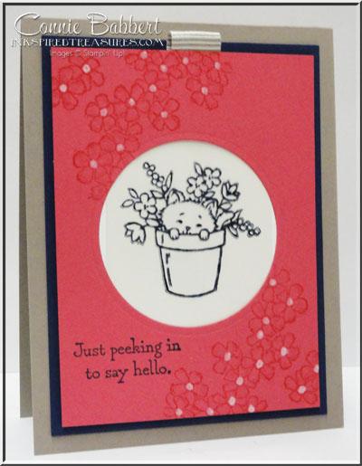 Pretty Kitty Magic Card