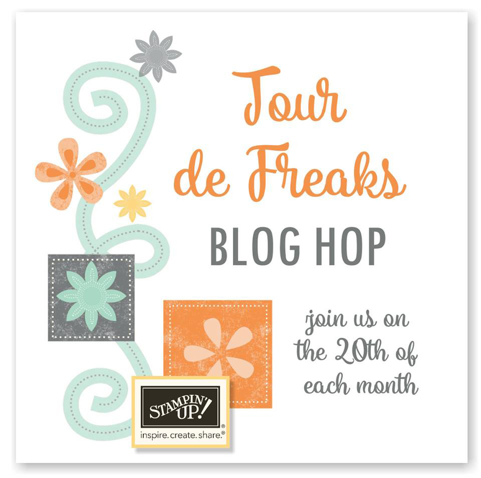 Control Freaks Feb 2017 Blog Hop