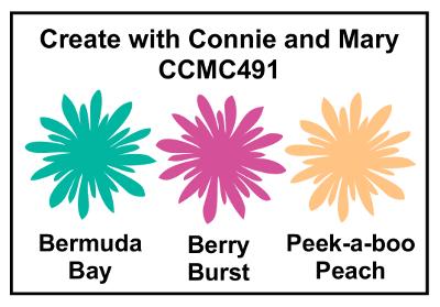 CCMC491 Picture Perfect Birthday