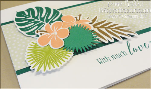 Stampin' Up! Tropical Chic closeup